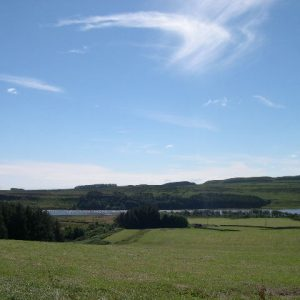 View over Greenlee estate